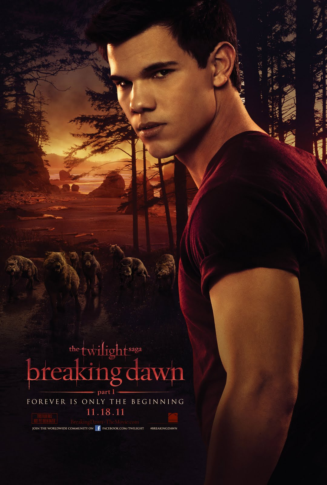 Twilight Breaking Dawn Part 1